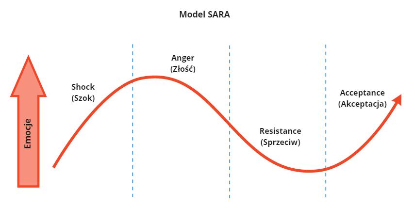 Model SARA feedback